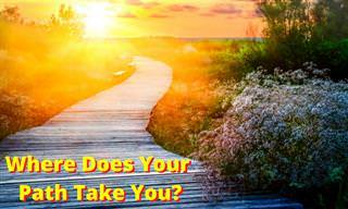 What Path Does Your Life Take? Answer Our <b>Quiz</b>!