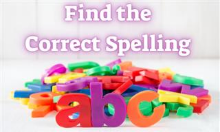Can You Correct Our Spelling?