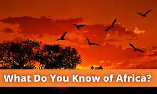 What Do You Know About Africa?