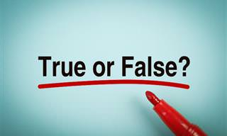 Can You Tell The True From the False?