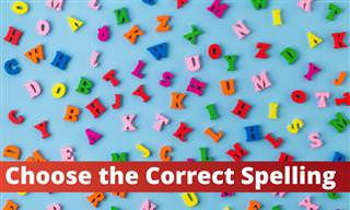 Can You Choose the Correct <b>Spelling</b>?