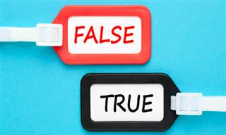 Which &quot;<b>Fact</b>&quot; is a FAKE?