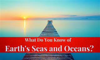 Earth&#x27;s Ocean and Sea <b>Quiz</b>