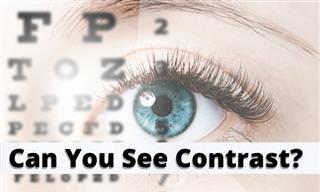 <b>How</b> <b>Well</b> <b>Can</b> You Tell Contrast?