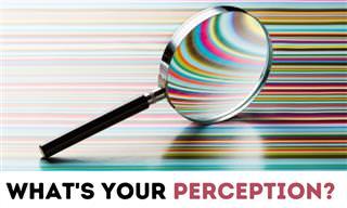 How <b>Visually</b> Perceptive Are You?