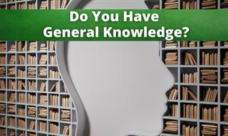 Do You Have General Knowledge?