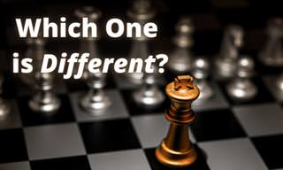 Can You <b>Find</b> the <b>Differences</b>?
