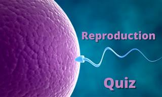 <b>How</b> Well Do <b>You</b> Know Reproduction?