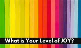 Take a Color <b>Quiz</b> to Determine Your Joy