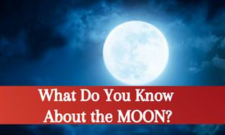 What Do You Know <b>About</b> the Moon?