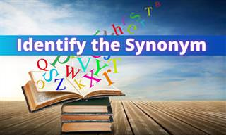 Can You <b>Find</b> the Obscure Synonym?