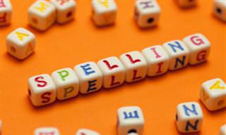 Will You Beat Our Spelling Bee?