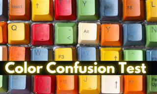 The Color Confusion <b>Test</b>