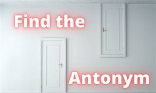 Find all 15 Tricky Antonyms!