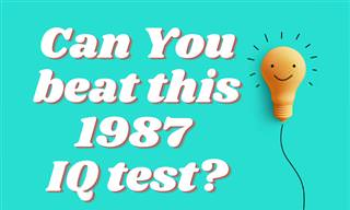 Can You Beat This 1987 <b>IQ</b> <b>Test</b>?