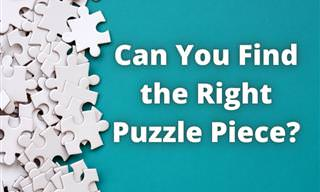 Can You Pass the <b>Puzzle</b> Test?