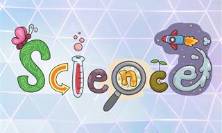 Test Your Inner Scientist!