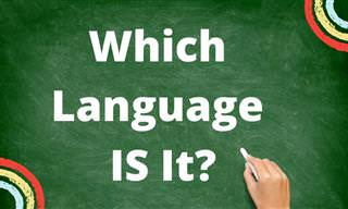 Can You Identify the <b>Language</b> From a Lone Sentence? (Part II)