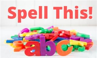 Will You Choose the Correct <b>Spelling</b>?