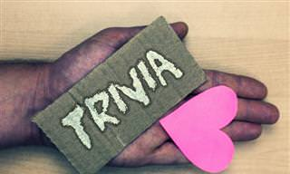 Nothing Trivial <b>About</b> This Trivia Challenge!