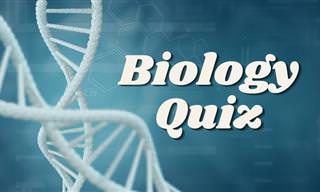Test Your Knowledge of Biology