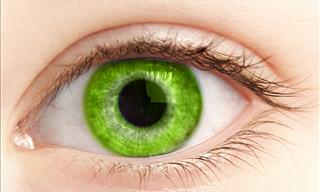 How Well <b>Do</b> You <b>See</b> Shades of Green?
