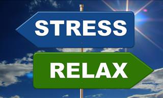 Are You <b>Stressed</b>?