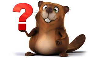 Can You Identify These <b>Animals</b>?
