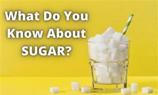 <b>How</b> <b>Much</b> <b>Do</b> <b>You</b> <b>Know</b> <b>About</b> Sugar?
