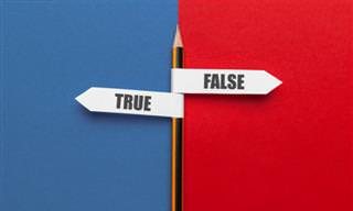 These True or False Questions Are Tricky!