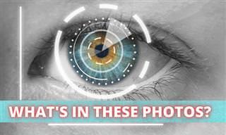 Eye <b>Test</b>: What&#x27;s in the Photo?