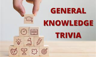 How <b>About</b> a Round of General Trivia?