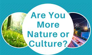 Nature or Culture: Which Are <b>You</b> <b>More</b>?